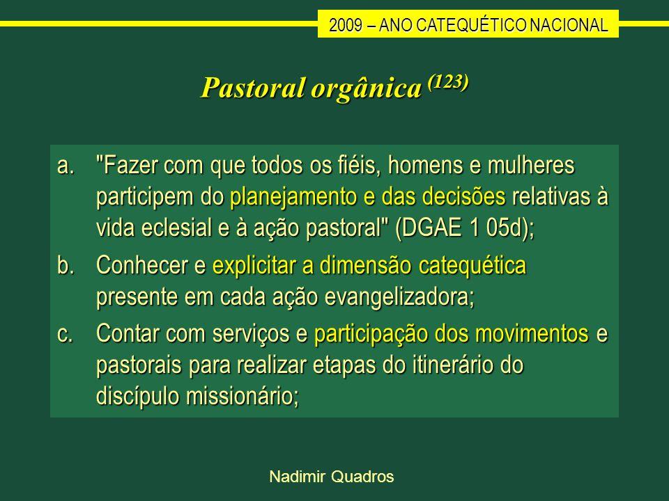2009 – ANO CATEQUÉTICO NACIONAL Nadimir Quadros Pastoral orgânica (123) a.