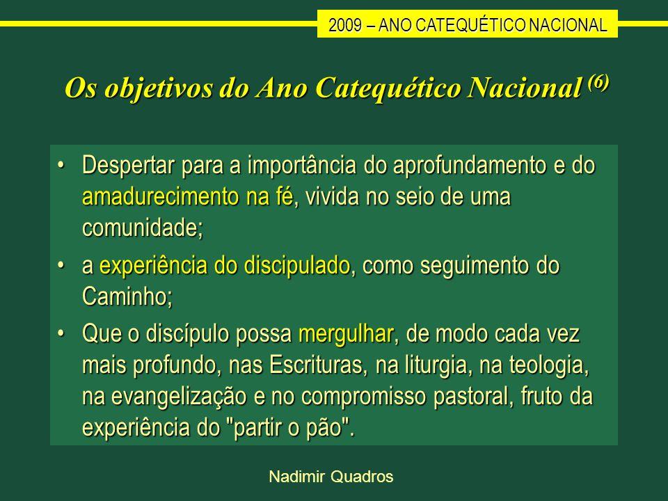 2009 – ANO CATEQUÉTICO NACIONAL Nadimir Quadros Os objetivos do Ano Catequético Nacional (6) Despertar para a importância do aprofundamento e do amadu