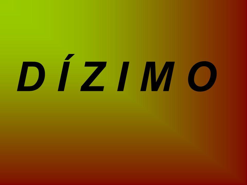 D Í Z I M O