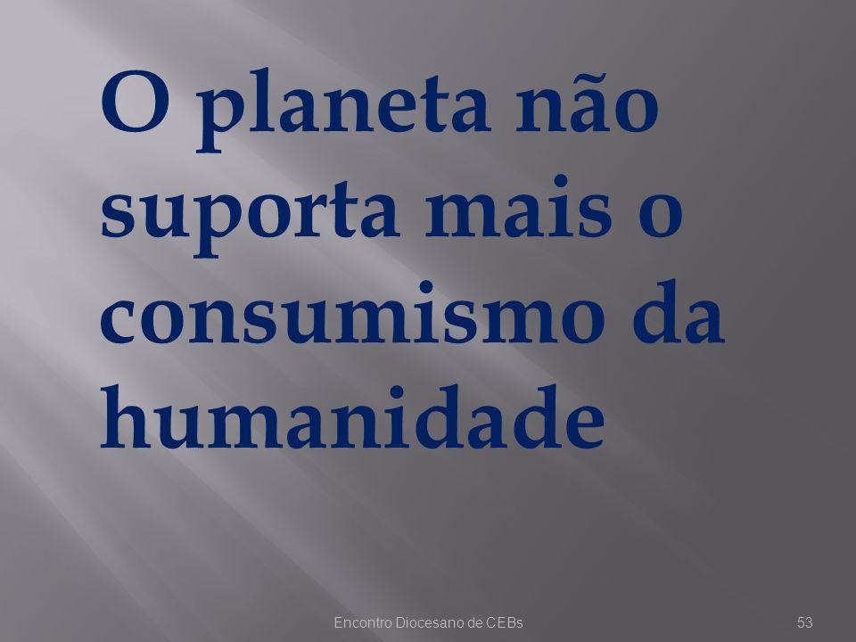 Encontro Diocesano de CEBs53 O planeta não suporta mais o consumismo da humanidade