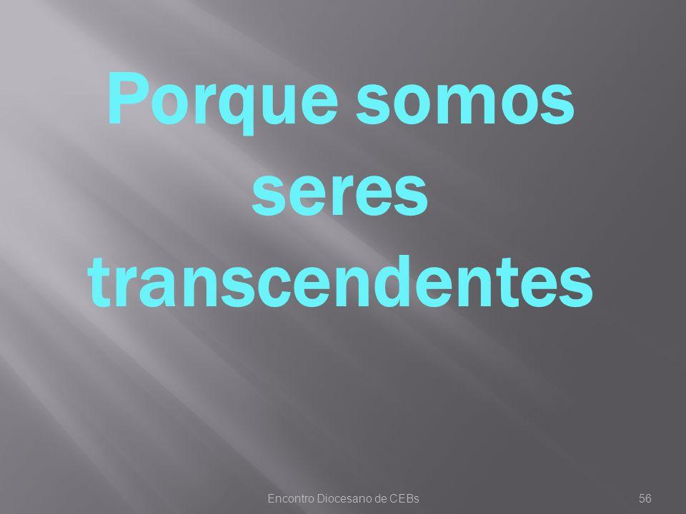 Encontro Diocesano de CEBs56 Porque somos seres transcendentes