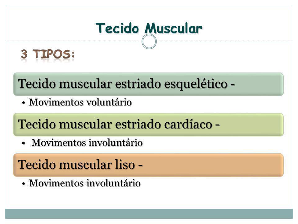 Tecido Muscular Tecido muscular estriado esquelético - Movimentos voluntárioMovimentos voluntário Tecido muscular estriado cardíaco - Movimentos invol