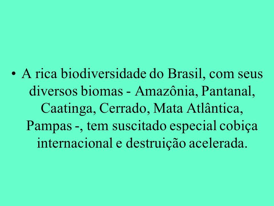 A rica biodiversidade do Brasil, com seus diversos biomas - Amazônia, Pantanal, Caatinga, Cerrado, Mata Atlântica, Pampas -, tem suscitado especial co