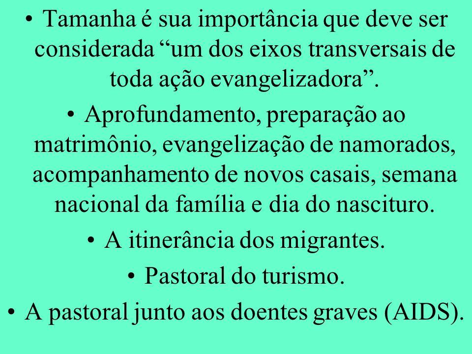 Tamanha é sua importância que deve ser considerada um dos eixos transversais de toda ação evangelizadora. Aprofundamento, preparação ao matrimônio, ev