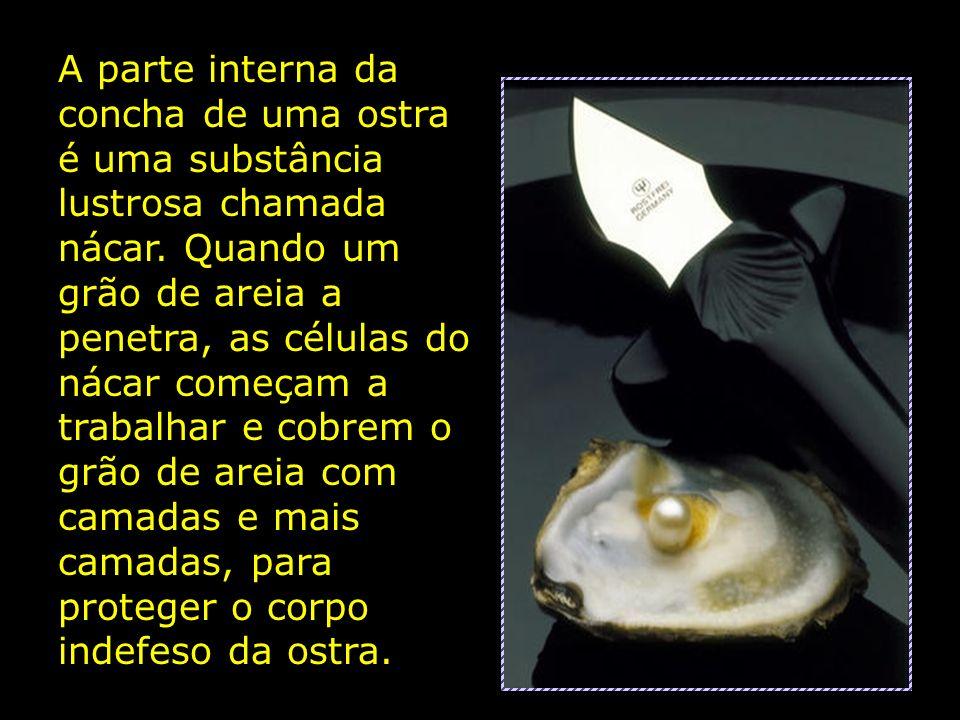 A parte interna da concha de uma ostra é uma substância lustrosa chamada nácar.