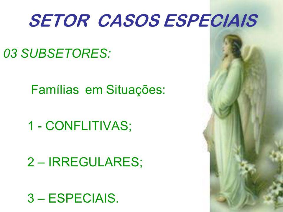 SETOR CASOS ESPECIAIS 03 SUBSETORES: Famílias em Situações: 1 - CONFLITIVAS; 2 – IRREGULARES; 3 – ESPECIAIS.