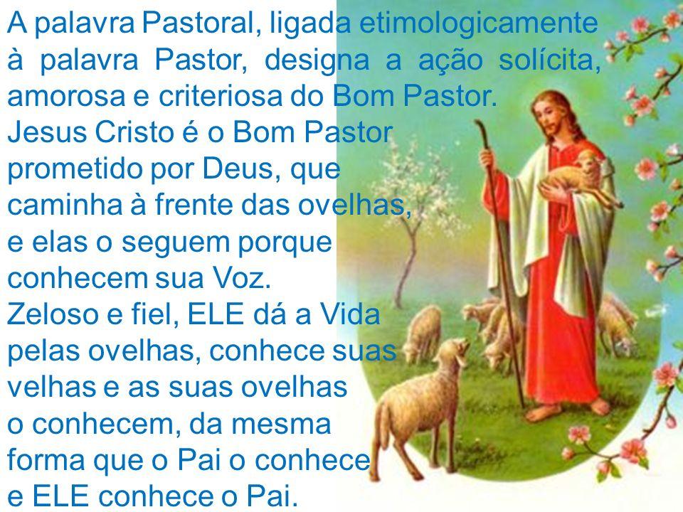 A palavra Pastoral, ligada etimologicamente à palavra Pastor, designa a ação solícita, amorosa e criteriosa do Bom Pastor. Jesus Cristo é o Bom Pastor