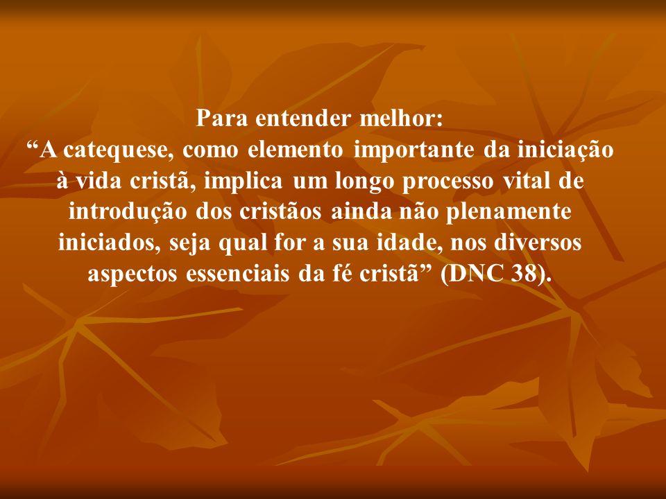 INTRODUZIR ALGUÉM NO MINISTÉRIO DE CRISTO PROCESSO DE EVANGELIZAÇÃO INTERAÇÃO ENTRE FÉ E VIDA