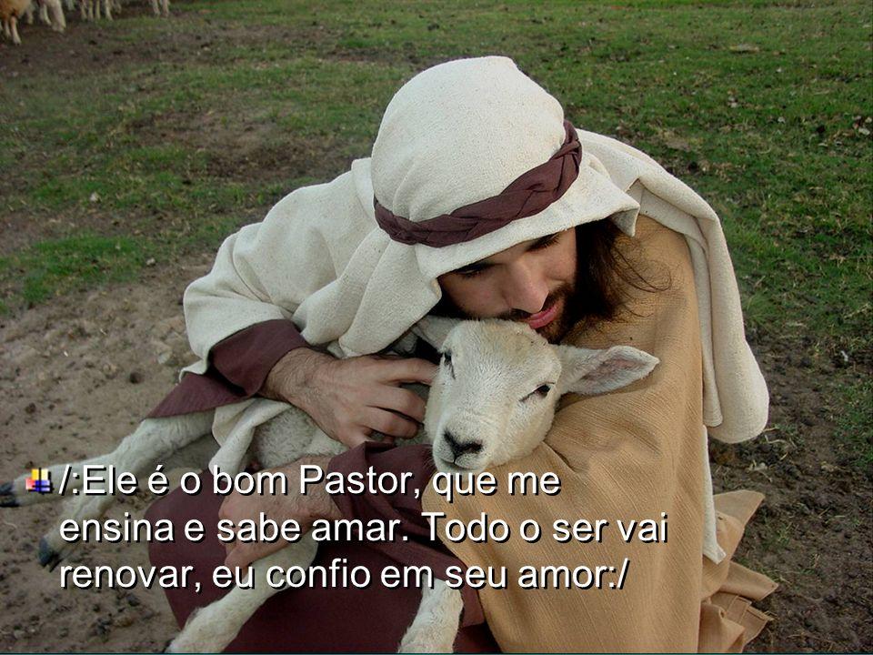 4.Nos seus braços de Pastor, Jesus acolhe Todo aquele que sozinho quer partir.