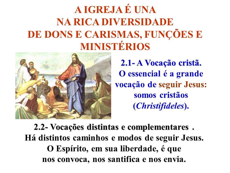 A IGREJA É UNA NA RICA DIVERSIDADE DE DONS E CARISMAS, FUNÇÕES E MINISTÉRIOS 2.1- A Vocação cristã. O essencial é a grande vocação de seguir Jesus: so