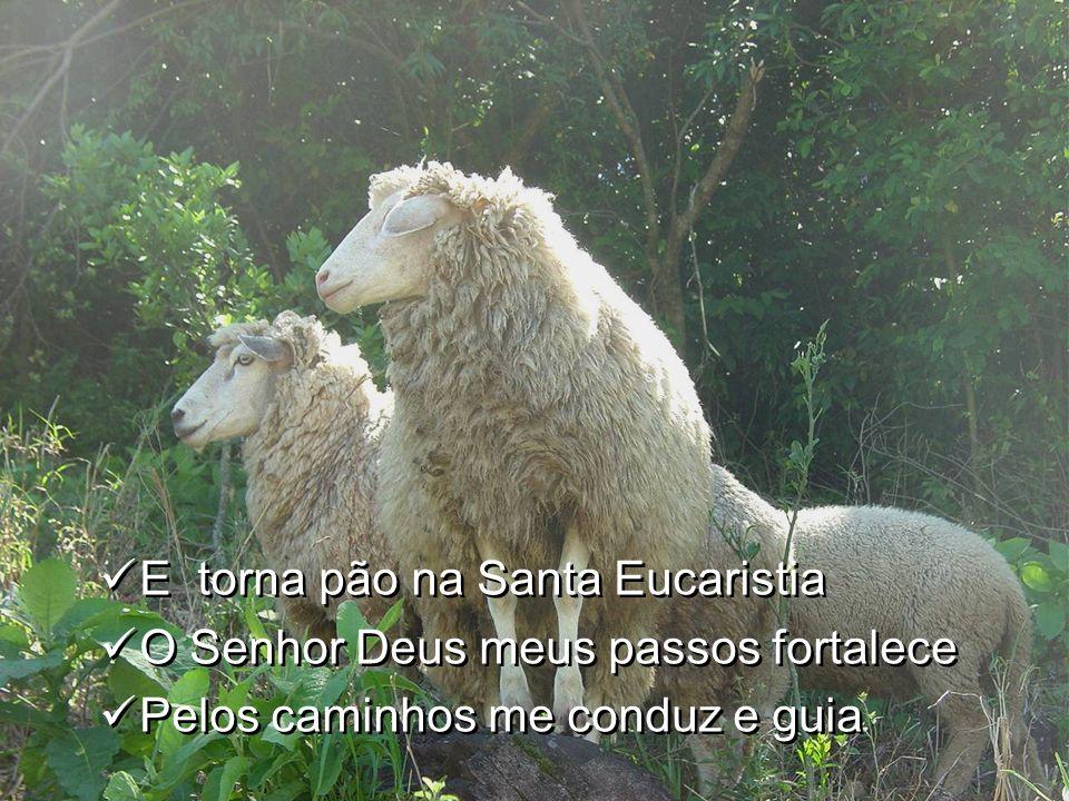 E torna pão na Santa Eucaristia O Senhor Deus meus passos fortalece Pelos caminhos me conduz e guia E torna pão na Santa Eucaristia O Senhor Deus meus passos fortalece Pelos caminhos me conduz e guia