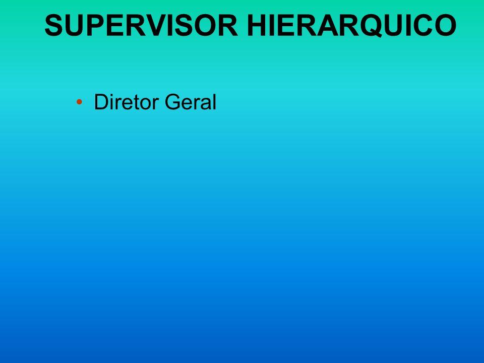 SUPERVISOR HIERARQUICO Diretor Geral