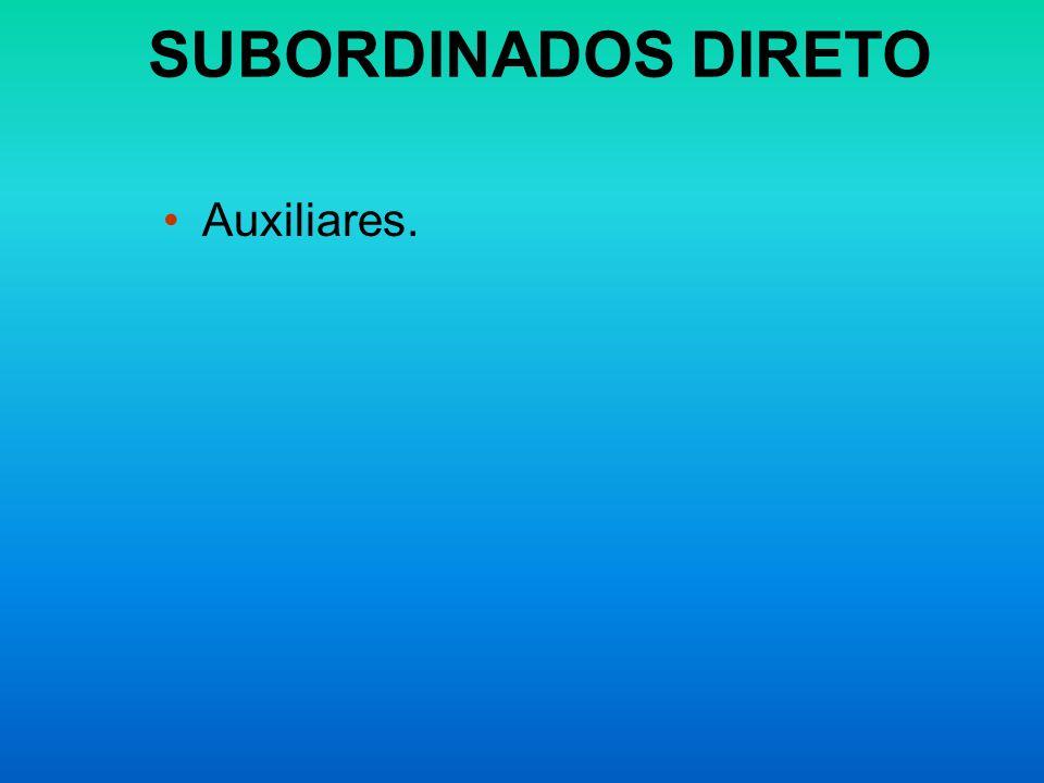 SUBORDINADOS DIRETO Auxiliares.