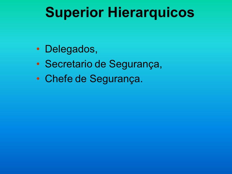 Superior Hierarquicos Delegados, Secretario de Segurança, Chefe de Segurança.