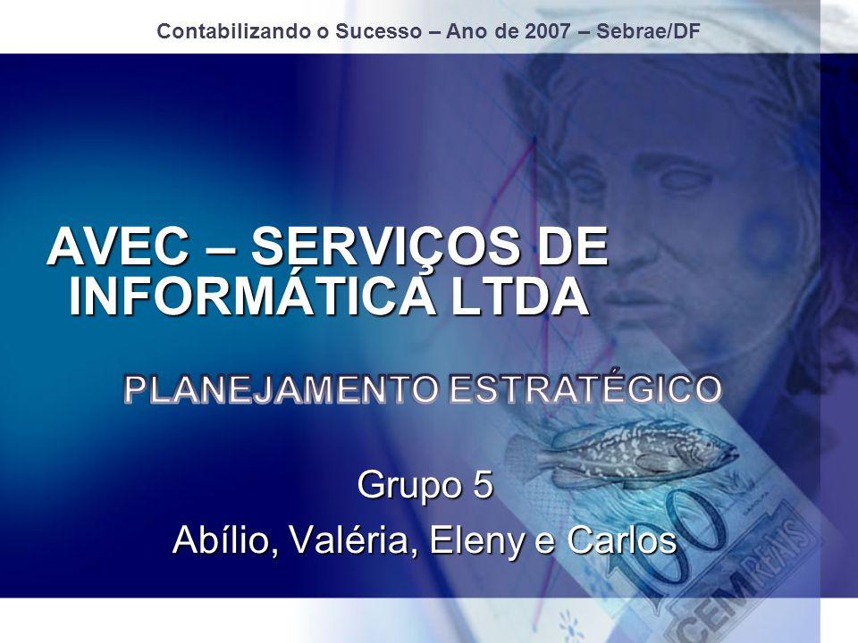 AVEC – SERVIÇOS DE INFORMÁTICA LTDA Grupo 5 Abílio, Valéria, Eleny e Carlos Contabilizando o Sucesso – Ano de 2007 – Sebrae/DF