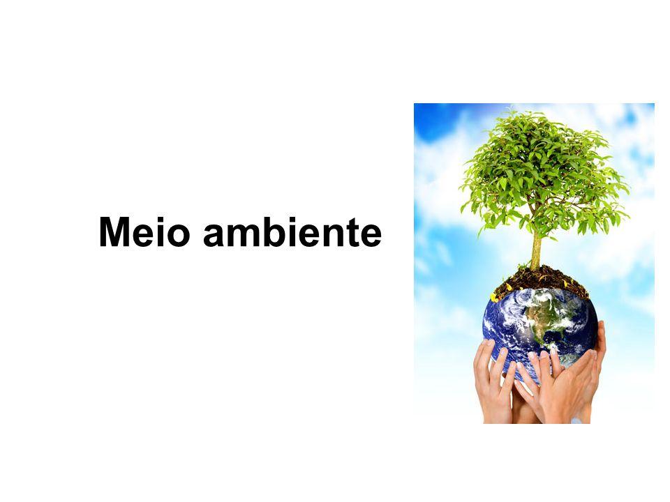 O meio ambiente, comumente chamado apenas de ambiente, envolve todas as coisas vivas e não-vivas ocorrendo na Terra, ou em alguma região dela, que afetam os ecossistemas e a vida dos humanos.vivas Terraecossistemas humanos