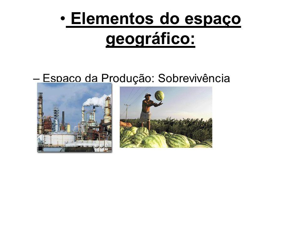 Elementos do espaço geográfico: –Espaço da Produção: Sobrevivência
