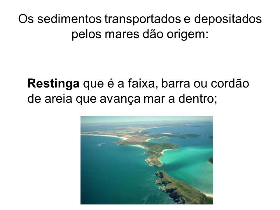 Os sedimentos transportados e depositados pelos mares dão origem: Restinga que é a faixa, barra ou cordão de areia que avança mar a dentro;