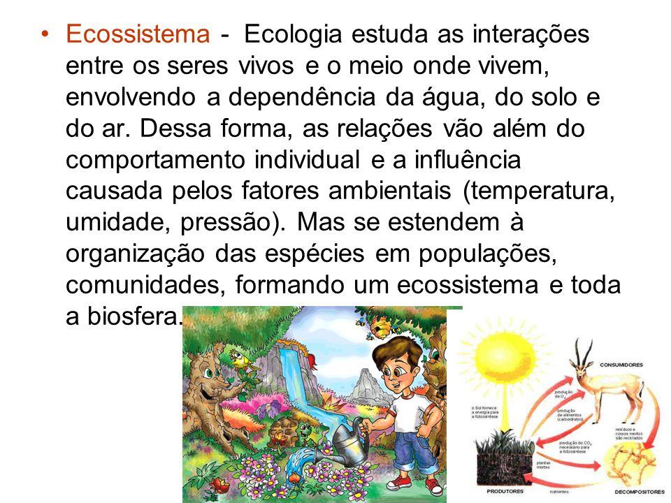 Ecossistema - Ecologia estuda as interações entre os seres vivos e o meio onde vivem, envolvendo a dependência da água, do solo e do ar. Dessa forma,