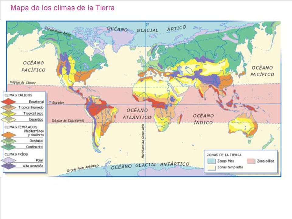 O clima faz com que essas regiões sejam muito diferentes uma das outras; basta lembrar-se das florestas