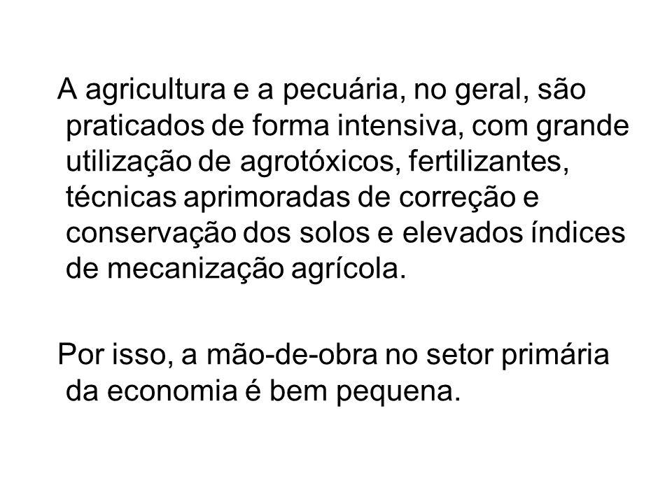 A agricultura e a pecuária, no geral, são praticados de forma intensiva, com grande utilização de agrotóxicos, fertilizantes, técnicas aprimoradas de