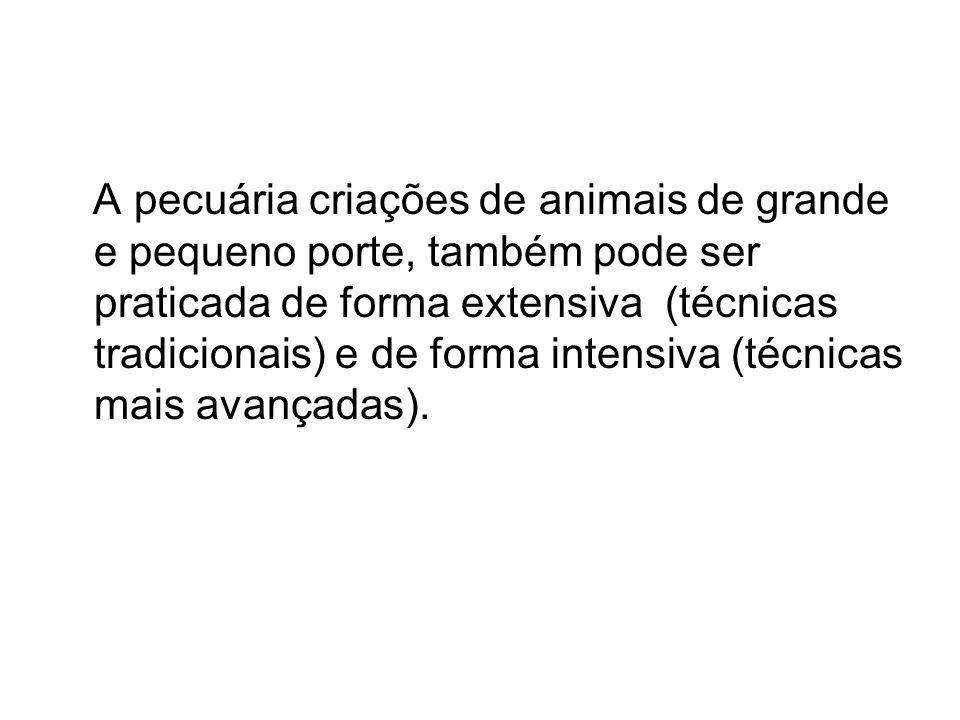 A pecuária criações de animais de grande e pequeno porte, também pode ser praticada de forma extensiva (técnicas tradicionais) e de forma intensiva (t