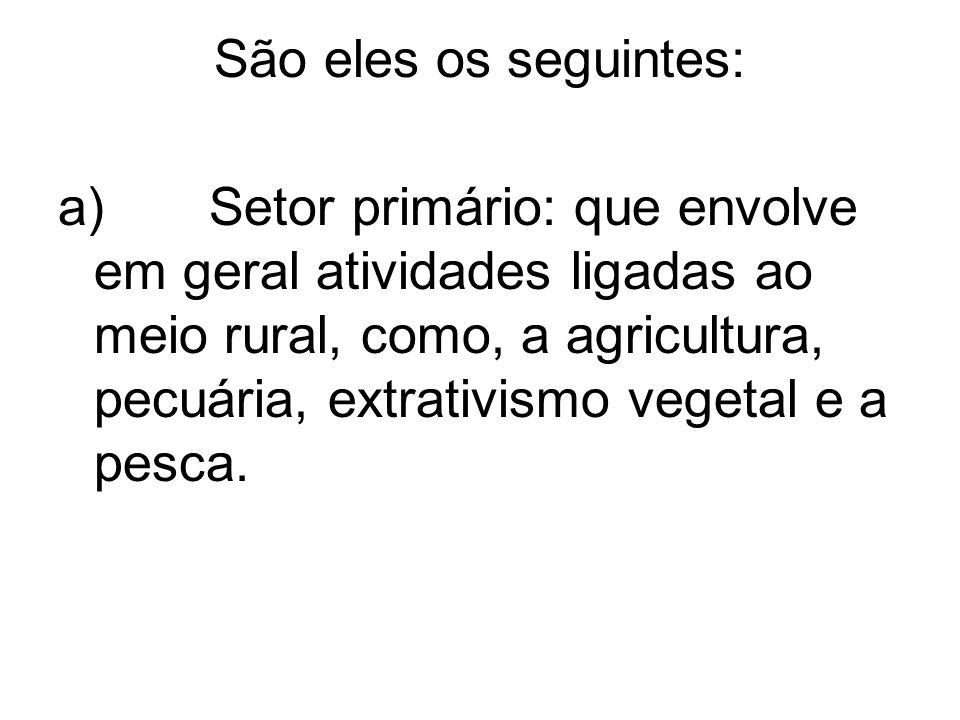 São eles os seguintes: a) Setor primário: que envolve em geral atividades ligadas ao meio rural, como, a agricultura, pecuária, extrativismo vegetal e