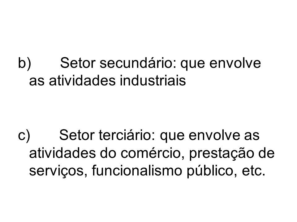 b) Setor secundário: que envolve as atividades industriais c) Setor terciário: que envolve as atividades do comércio, prestação de serviços, funcional