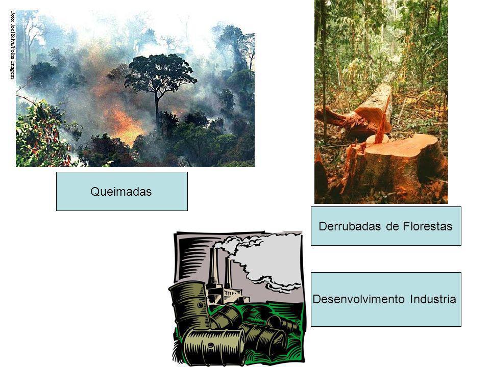 Queimadas Derrubadas de Florestas Desenvolvimento Industria