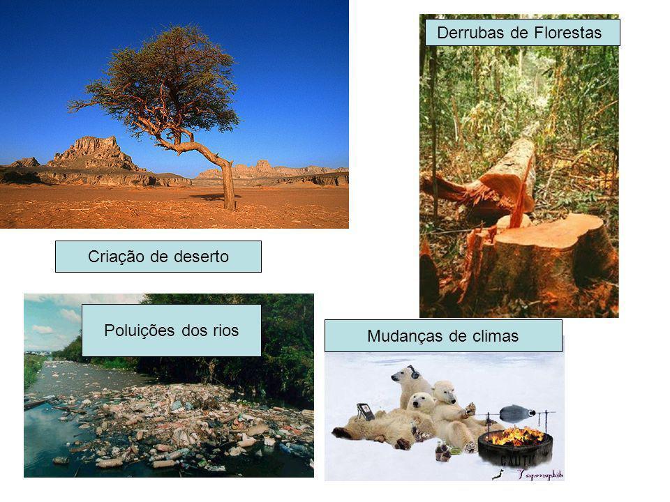 Criação de deserto Derrubas de Florestas Poluições dos rios Mudanças de climas