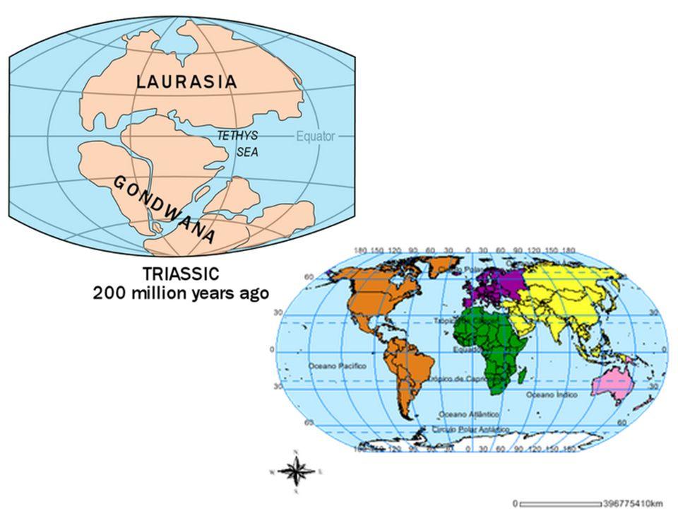 Assim concluímos que a crosta terrestre é fragmentada em vários blocos chamados Placas Tectônicas.