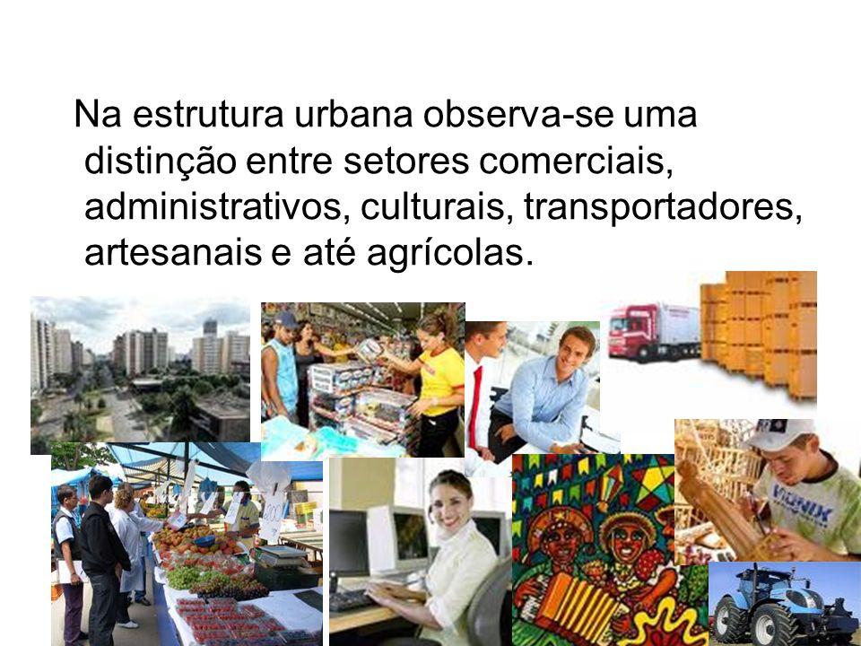 Na estrutura urbana observa-se uma distinção entre setores comerciais, administrativos, culturais, transportadores, artesanais e até agrícolas.