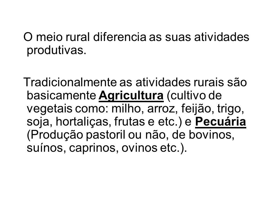 O meio rural diferencia as suas atividades produtivas. Tradicionalmente as atividades rurais são basicamente Agricultura (cultivo de vegetais como: mi