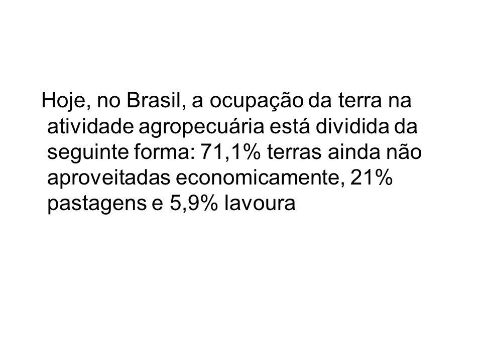 Hoje, no Brasil, a ocupação da terra na atividade agropecuária está dividida da seguinte forma: 71,1% terras ainda não aproveitadas economicamente, 21