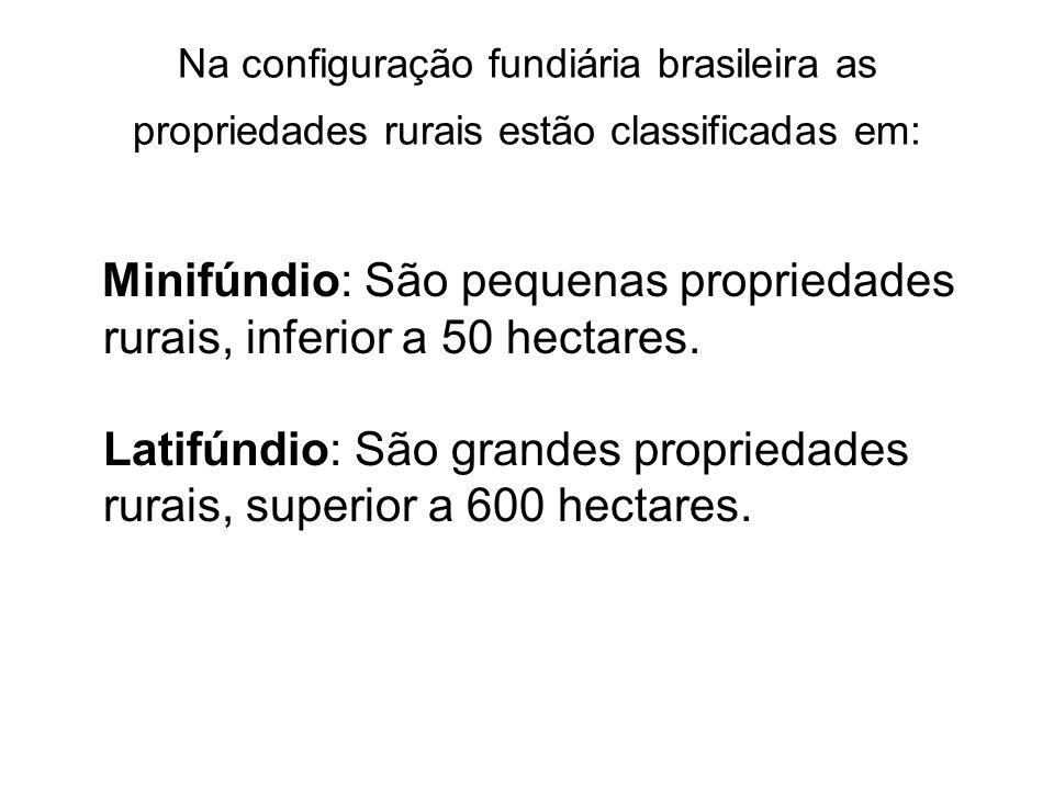 Na configuração fundiária brasileira as propriedades rurais estão classificadas em: Minifúndio: São pequenas propriedades rurais, inferior a 50 hectar