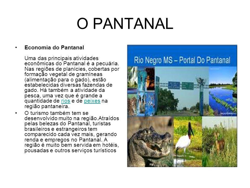 O PANTANAL Economia do Pantanal Uma das principais atividades econômicas do Pantanal é a pecuária. Nas regiões de planícies, cobertas por formação veg