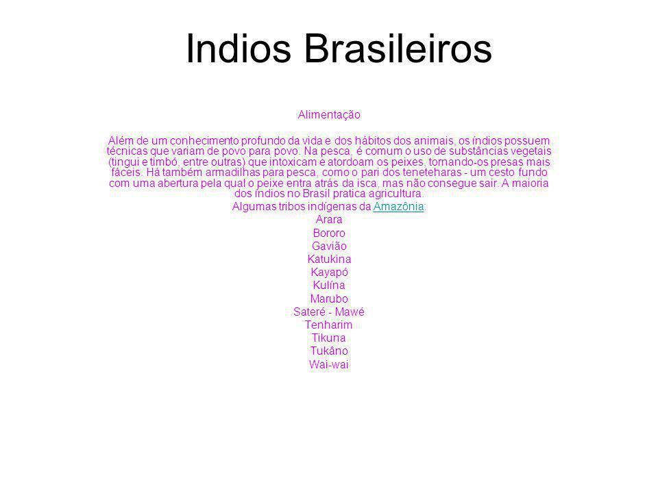Indios Brasileiros Alimentação Além de um conhecimento profundo da vida e dos hábitos dos animais, os índios possuem técnicas que variam de povo para