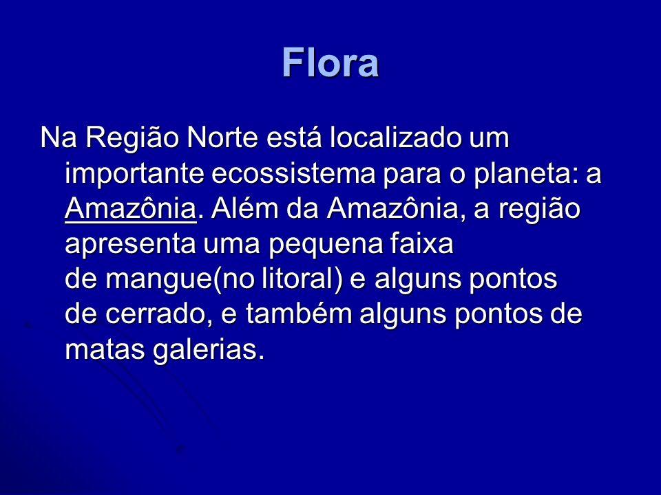 Flora Na Região Norte está localizado um importante ecossistema para o planeta: a Amazônia. Além da Amazônia, a região apresenta uma pequena faixa de