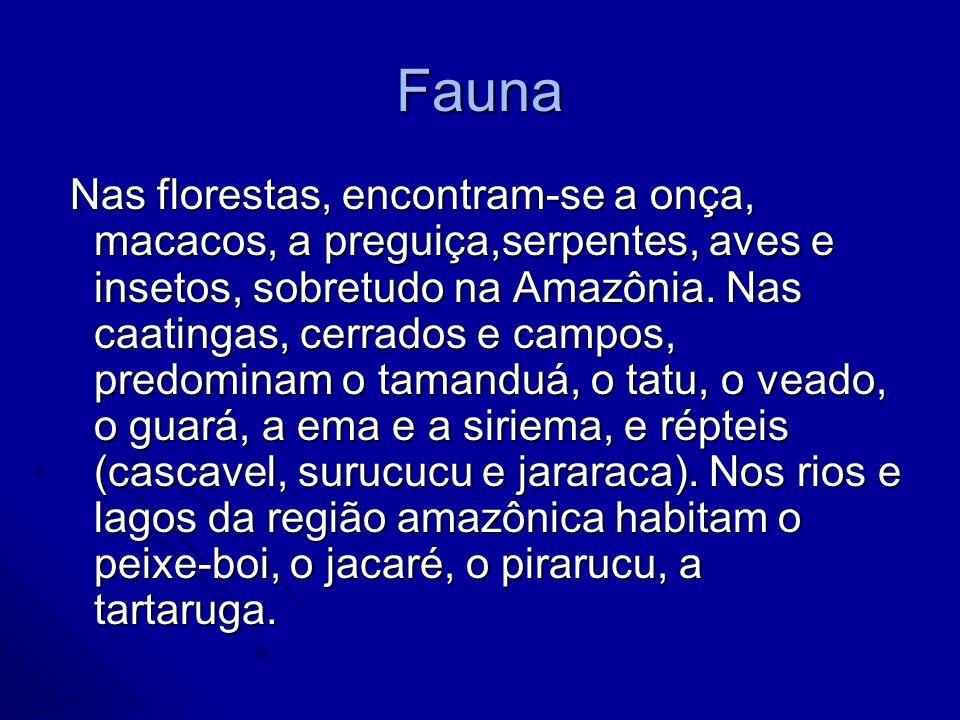 Fauna Nas florestas, encontram-se a onça, macacos, a preguiça,serpentes, aves e insetos, sobretudo na Amazônia. Nas caatingas, cerrados e campos, pred