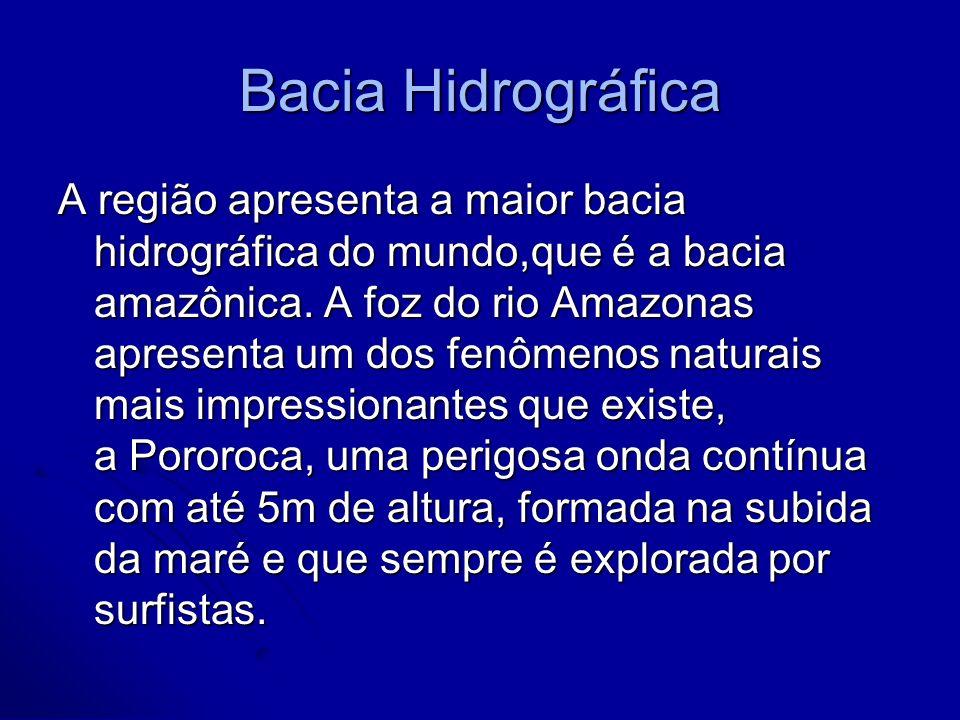 Bacia Hidrográfica A região apresenta a maior bacia hidrográfica do mundo,que é a bacia amazônica. A foz do rio Amazonas apresenta um dos fenômenos na
