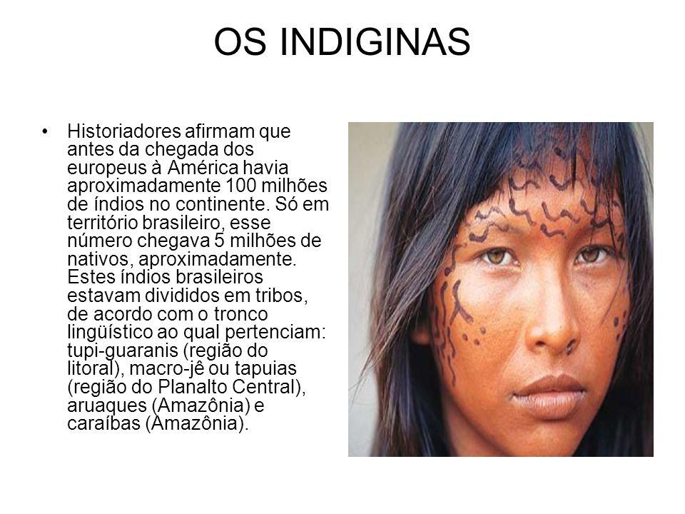 OS INDIGINAS Historiadores afirmam que antes da chegada dos europeus à América havia aproximadamente 100 milhões de índios no continente. Só em territ