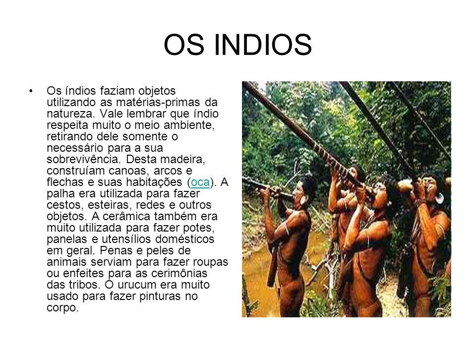 OS INDIOS Os índios faziam objetos utilizando as matérias-primas da natureza. Vale lembrar que índio respeita muito o meio ambiente, retirando dele so