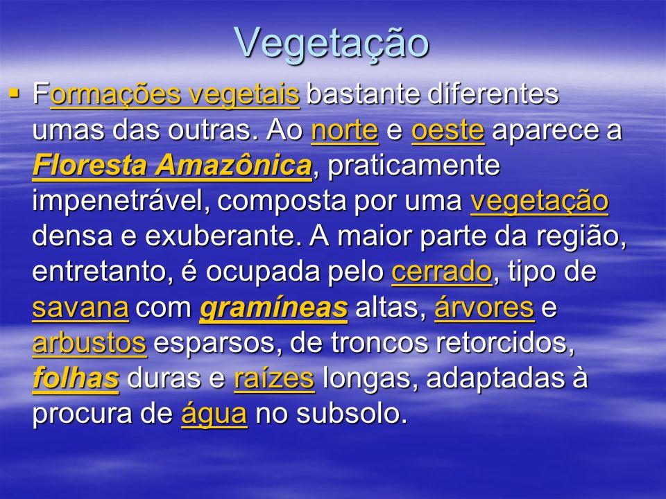Vegetação Formações vegetais bastante diferentes umas das outras. Ao norte e oeste aparece a Floresta Amazônica, praticamente impenetrável, composta p