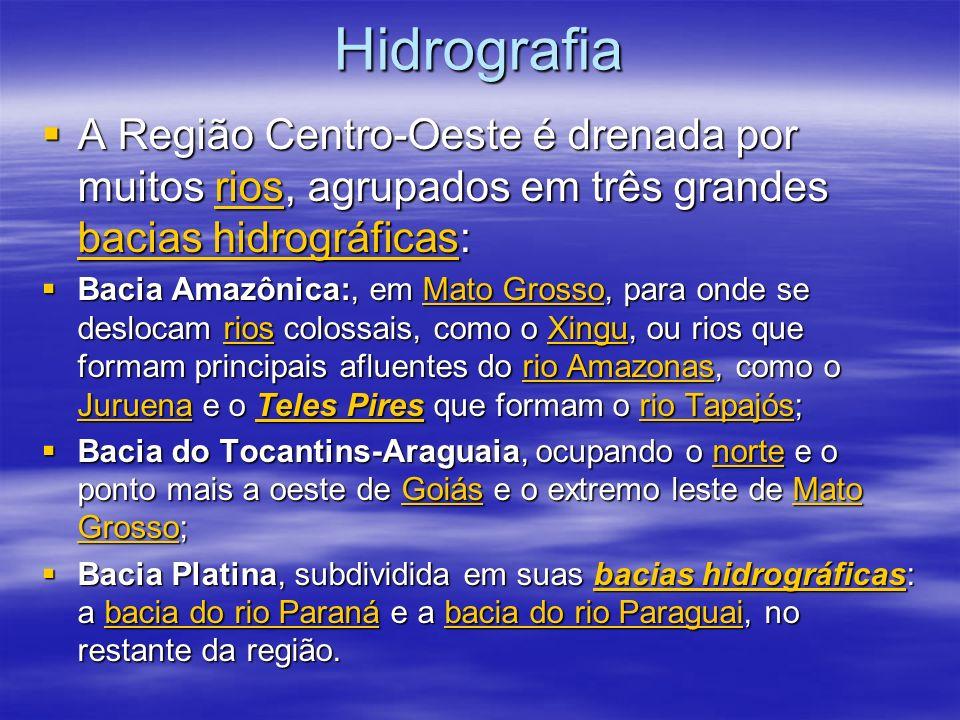 Bacia do rio Paraná, Na divisa com os estados de Minas Gerais, São Paulo e Paraná, o Centro-Oeste é banhado pelo rio Paraná e por um de seus formadores, o Rio Paranaíba, no extremo sul de Goiás Bacia do rio Paraná, Na divisa com os estados de Minas Gerais, São Paulo e Paraná, o Centro-Oeste é banhado pelo rio Paraná e por um de seus formadores, o Rio Paranaíba, no extremo sul de GoiásMinas GeraisSão PauloParanário ParanáRio ParanaíbaGoiásMinas GeraisSão PauloParanário ParanáRio ParanaíbaGoiás Bacia do rio Paraguai, A maior bacia hidrográfica em extensão da região Centro-Oeste é a bacia do rio Paraguai, que nasce na Chapada dos Parecis, no Estado de Mato Grosso.