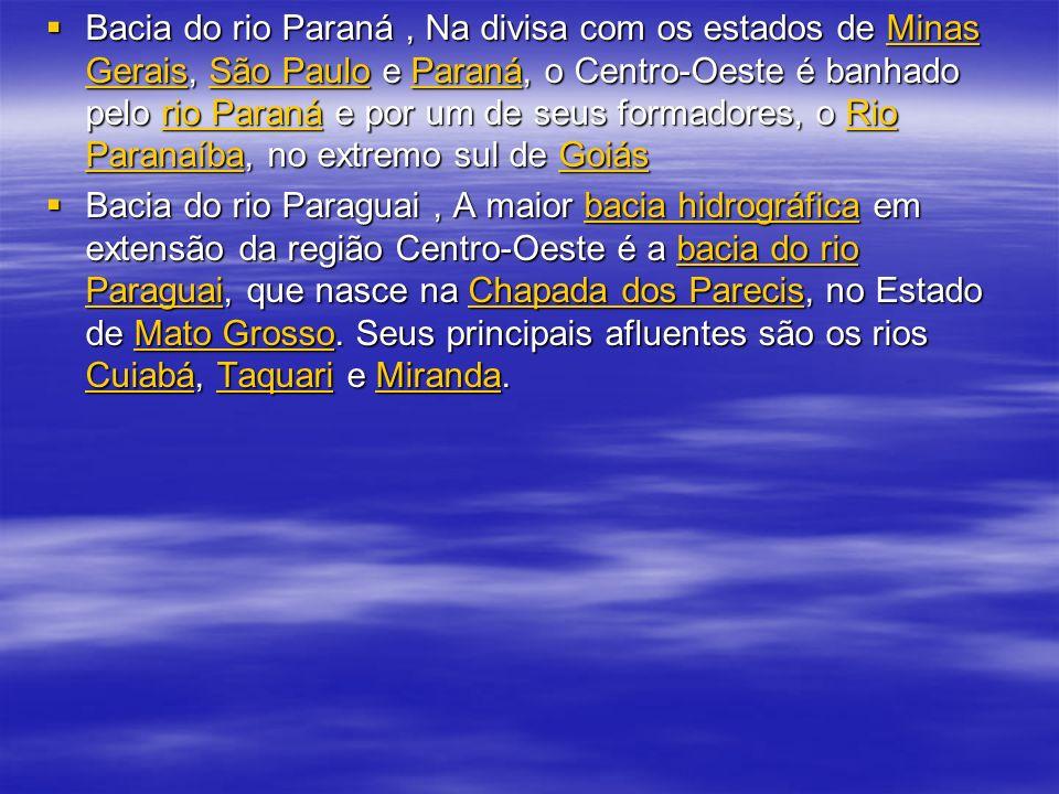 Bacia do rio Paraná, Na divisa com os estados de Minas Gerais, São Paulo e Paraná, o Centro-Oeste é banhado pelo rio Paraná e por um de seus formadore