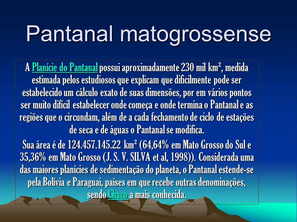Pantanal matogrossense A Planície do Pantanal possui aproximadamente 230 mil km², medida estimada pelos estudiosos que explicam que dificilmente pode
