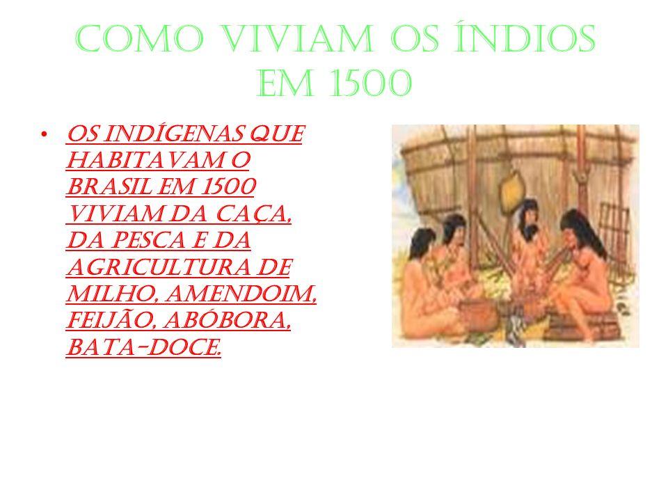 Como viviam os índios em 1500 Os indígenas que habitavam o Brasil em 1500 viviam da caça, da pesca e da agricultura de milho, amendoim, feijão, abóbor