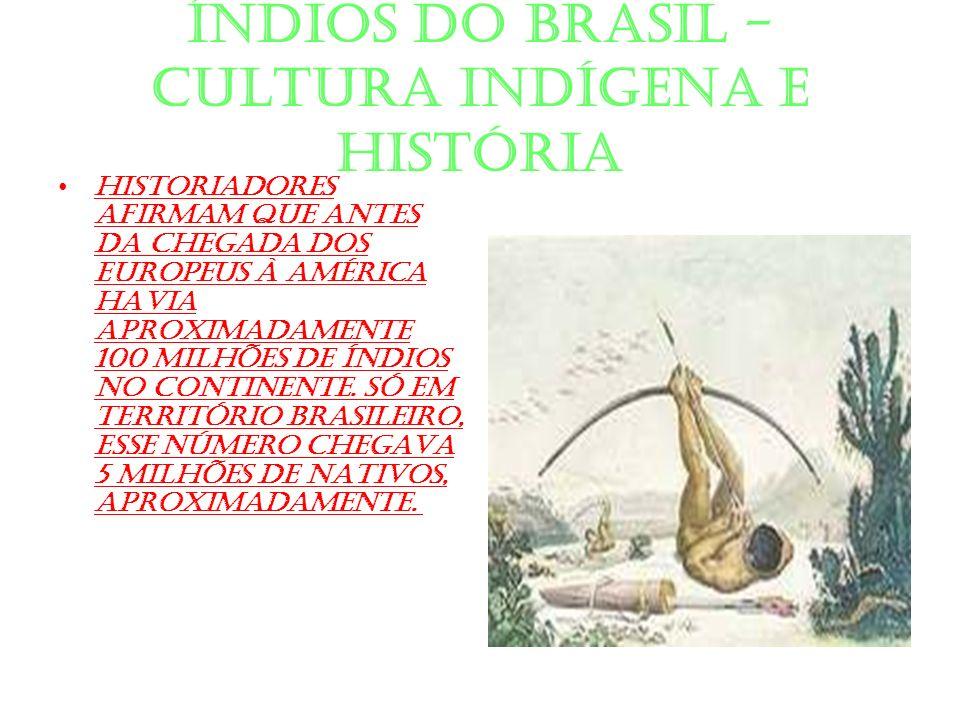 ÍNDIOS DO BRASIL - CULTURA INDÍGENA E HISTÓRIA Historiadores afirmam que antes da chegada dos europeus à América havia aproximadamente 100 milhões de