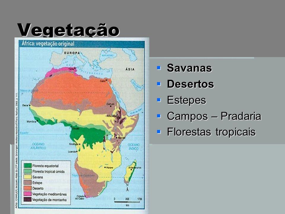 Vegetação Savanas Savanas Desertos Desertos Estepes Estepes Campos – Pradaria Campos – Pradaria Florestas tropicais Florestas tropicais