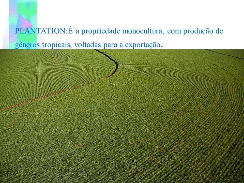 PLANTATION:É a propriedade monocultura, com produção de gêneros tropicais, voltadas para a exportação.